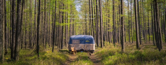 Bomen-quote_verder_caravan4kopie